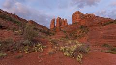 Life Below Cathedral Rock ... Morning View (Ken Krach Photography) Tags: sedonaarizona