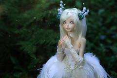 IMG_1161 (~ko4erishka) Tags: bjd doll fairyland feeple60 moe cygne
