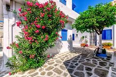 Parikia, Paros (Kevin R Thornton) Tags: d90 nikon travel street parikia mediterranean greece architecture paros egeo gr