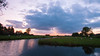 Sunset moments (M a u r i c e) Tags: dusk netherlands teckop polder wideangle ultrawidezoom efs1022mm water pond reflections tree sheep cows sky cloud summer nature