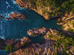 "Costa Brava. (¡arturii!) Tags: wow amazing awesome superb interesting stunning impressive nice beauty great arturii arturdebattk ""canonoes6d"" gettyimages travel trip tour route viatge holidays vacations dji drone drones aerial fromabove view nature landscape shoreline coast beach natura costabrava catalonia catalunya europe spain colors summer cool visual top pic rock tree pine mediterranean sea sunrise light"