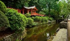 Nezu Jinja (tokyobogue) Tags: tokyo japan nezu nezujinja shrine nezushrine old religion nikon nikond7100 d7100 red shitamachi