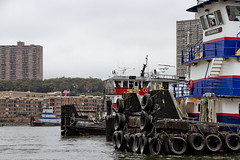 r_170903166_beat0053_a (Mitch Waxman) Tags: 2017greatnorthrivertugboatrace 42ndstreet donjon fireboatjohnjharvey hudsonriver midtown millerslaunch mistert newyorkcity newyorkharbor tugboat workingharborcommittee newyork