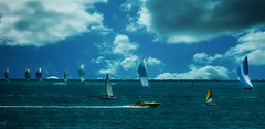 The Summer LB (beachpeepsrus) Tags: shore sailboat alamitosbay beach water westcoast longbeachcalifornia longbeachgranprix