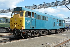 """Preserved BR Blue Class 31/4, 31438 (37190 """"Dalzell"""") Tags: brblue ee englishelectric brush type2 ped golye brian class31 class314 31438 31538 31139 d5557 gwr greatwesternrailway firstgroup legendsofthegreatwestern openday ooc111 oldoakcommon depot london"""