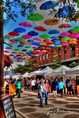 Festival of Arts (Tom Mortenson) Tags: artfestival wisconsin wausau marathoncounty centralwisconsin umbrellas colorful colour midwest usa america northamerica geotagged artrageousweekend festivalofarts