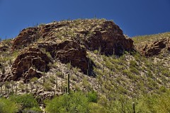 Uneven and Rough Hillsides While in Sabino Canyon
