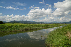 Agricultural canals. (Yasuyuki Oomagari) Tags: agriculture canal weed reflection cloud grass green blue rural country countryside landscpe river summer nikon d810 zeiss distagont2821 mountain