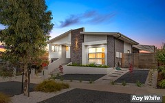 118 Langtree Crescent, Crace ACT