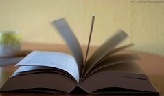 Flickr Friday #SecondWind #flying book pages (ramonaschmitt) Tags: flickrfriday secondwind nikkor35mm nikond3300 book buch wind lesen read bildung education 35mm blur