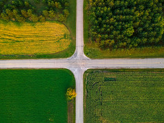 (Daniel000000) Tags: dji djispark spark drone uav four corners trees field landscape road roads wisconsin midwest fields light green yellow tree nature summer