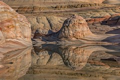 *North Coyote Buttes Reflections* (Albert Wirtz @ Landscape and Nature Photography) Tags: northcoyotebuttesreflections albertwirtz spiegelung reflection cbn coyotebuttes northcoyotebuttes vermilioncliffs arizona northarizona usa unitedstates vereinigtestaaten southwest usasouthwest patterns sandstone sandstein natur natura nature natureabstraction naturabstrakt nationalmonument vermilioncliffsnationalmonument water wasser windstill thewave secondwave toprock slickrock coconinocounty genehmigung permit lottery wavelottery coppercloudsilvernsun reflejos riflessi reflexos reflexions