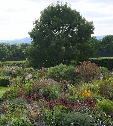 Lovely garden with a view of the South Downs