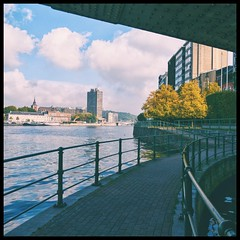 OnePlus 5 (Falcdragon) Tags: meuse belgium liege river autumn colour fall color leaves trees golden water ravel path