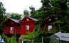 Fjäderholmarna - Agosto 2017
