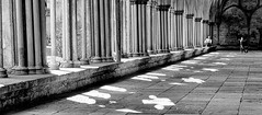 Using the light (phil anker) Tags: people street salisbury cathedral cloisters fuijx70