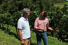 File440 (UGA CAES/Extension) Tags: grapes ugaextension cranecreekvineyards wine viticultureteam viticulture northgeorgiavineyards vineyards vines georgiawine uga