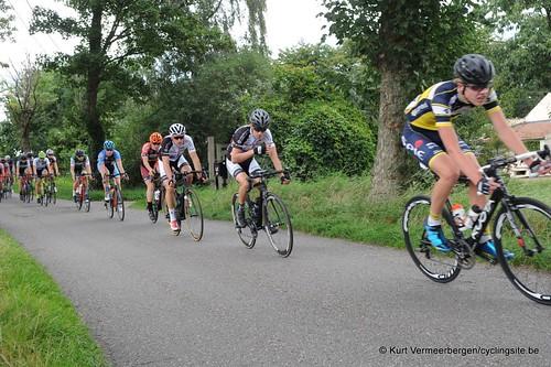 Omloop Vlaamse gewesten (317)