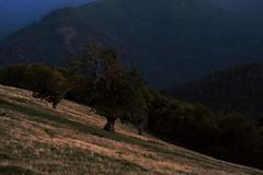 crépuscule dans la montagne (JJ_REY) Tags: crépuscule twilight montagne mountain nikon d700 micronikkor 55mmf28ais alsace france