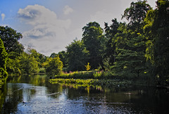 Summer Morning (MrBlueSky*) Tags: lake trees water grass green blue waterfowl sky outdoor nature kewgardens royalbotanicgardens london canon canoneos canonm6