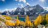 Larches at Eiffel Lake (christianschmaler) Tags: eiffellake larchtree larches mountains panorama seasonal fall autumn colors herbst herbstfarben berge bergpanorama banffnationalpark morainelake hiking wandern rockymountains canada kanada banff lake louise yellow lärchen