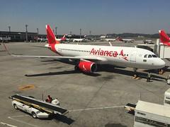 O6 A320 GRU (Luis Fernando Linares) Tags: planespotting jets sharklets oceanair one o6 guarulhos sbgr gru a320 brasil airport airlines airbus avianca aircraft airplane avgeek aviation