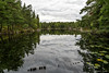 P9020011-Edit.jpg (marius.vochin) Tags: hiking forest 3 stockholm water green outdoor nature saltsjöbaden stockholmslän sweden se