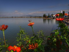 Vistonida lake..Porto Lagos..Xanthi Greece (panoskaralis) Tags: flowers flower insect bugs bridge woodenbridge wood lake vistonida water waterfront church nestosriver river xanthi greece greek hellas hellenic nature summer greeksummer summerholidays holidays outdoor landscape vacation