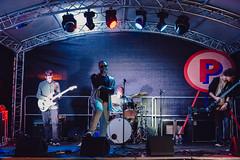 PF17_Photos_Tom Leighton_Peckham Festival_17092017_2495