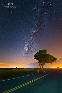 台東 池上鄉 伯朗大道 金城武樹 銀河