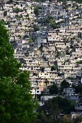 NP_Haiti31