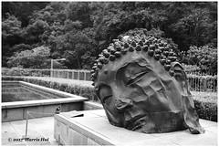 Find Your Buddha In The Heart - Hong Kong XP7113e (Harris Hui (in search of light)) Tags: harrishui fujixpro2 digitalmirrorlesscamera fuji fujifilm vancouver richmond bc canada vancouverdslrshooter mirrorless fujixambassador xt1 fujixcamera fujixseries fujix fuji23mmf14 fujiprimelens fixedlens acrosfilmsimulation acros bw blackwhite digitalbw mono monochrome buddha longislandbuddha zhanghuan publicart art artwork asiansocietyhongkong hongkong