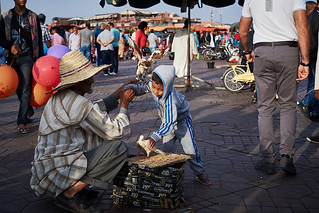 Moroccan raptor trainer, Jemaa el-Fnaa, Marrakesh, Morocco