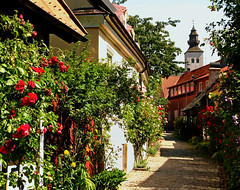 Visby, Gothland, Sweden, July 2005 (Juha Riissanen) Tags: ruotsi visby sweden alley flowers tower houses summer