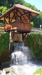 Ljubiš, Zlatibor, Serbia (nesoni2) Tags: ljubis zlatibor mountain cajetina serbia srbija ljubivoje rsumovic boskove vode