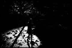 untitled (Albion Harrison-Naish) Tags: sydney newsouthwales australia streetphotography sydneystreetphotography albionharrisonnaish iphone mobilephotography iphoneography iphonese hipstamatic blackeyssupergrainfilm akiralens jollyrainbow2xflash unedited straightoutofcamera sooc