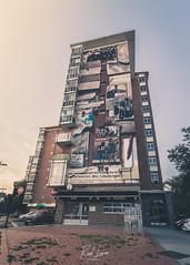 Martxoak 3ko oroigarri murala (Raul Piki Bolukua) Tags: vitoriagasteiz urban mural streetart zaramaga workingfight visualart landscape euskalherria afternoon nikond3200 sigma1020 desaturate matte 3demarzo martxoak3