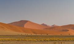 red dunes (Karl-Heinz Bitter) Tags: dünen dunes wüste namib namibia africa desert karlheinzbitter landschaft landscape
