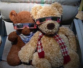 Eclipse Bears