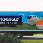 Identity Fleet Graphics:  Burnbrae Farms Ltd.; graphics by Turbo Images