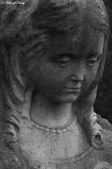 Antwerpen, Begraafplaats Schonselhof (Sven Kapunkt) Tags: antwerpen schonselhof begraafplaats belgien cemetery cemeteries cimetière friedhof friedhöfe engel angel statue gräber grab graveyard grabmal