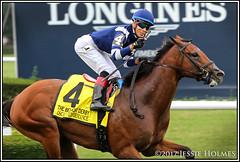 Oscar Performance wins the Belmont Derby (Spruceton Spook) Tags: belmontpark horseracing starsandstripesfestival horses oscarperformance belmontderby