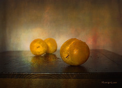 Three Plums ... (MargoLuc) Tags: fruits september golden plums yellow susine food sweet natural light soft table reflections stilllife droplets texture skeletalmess
