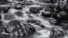 Rocky Mountain river (Tim Ravenscroft) Tags: waterfall river flumegorge whitemountains nh usa mon blackandwhite blackwhite hasselblad hasselbladx1d x1d