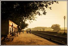 First Light (david.hayes77) Tags: shahi shahee ir ner indianrailways 2015 pilibhit india uttarpradesh firstlight dawn mg metregauge humanity passengers people travellers