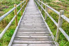Senda 2 (alanchanflor) Tags: senda camino cabo de peñas asturias españa verde canon