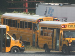 East End Bus Lines Walden Yard (ThoseGuys119) Tags: eastendbuslines orangecountytransitllc schoolbus maybrookny 2018 propane gasoline birdbus