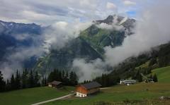 Zillertal Austria views - July17 (9) (ailognom2005) Tags: landscape austria mountains zillertalaustria zillertal pastures