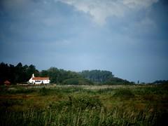 farmland (Maddy B Clark) Tags: seaside sea hunstanton wildlife dunes green swampland beautiful natural scenic