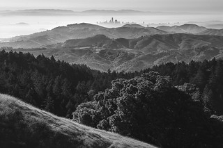 San Francisco from Mt Tam